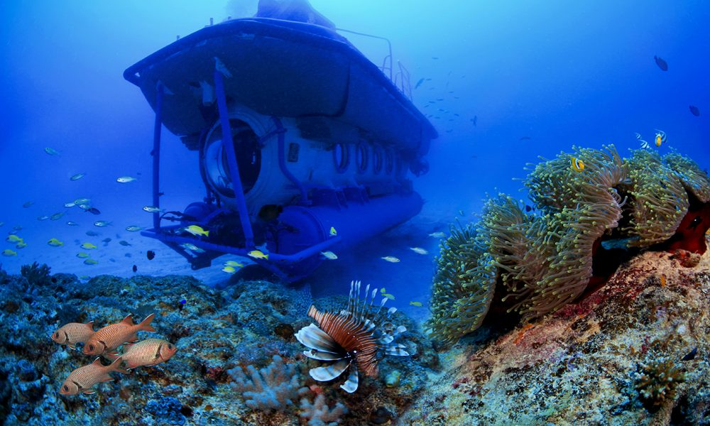 Submarine-and-coral-in-Mauritius